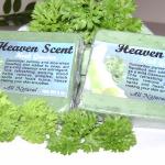 Herb Garden Cleanse