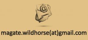 email forbizplan