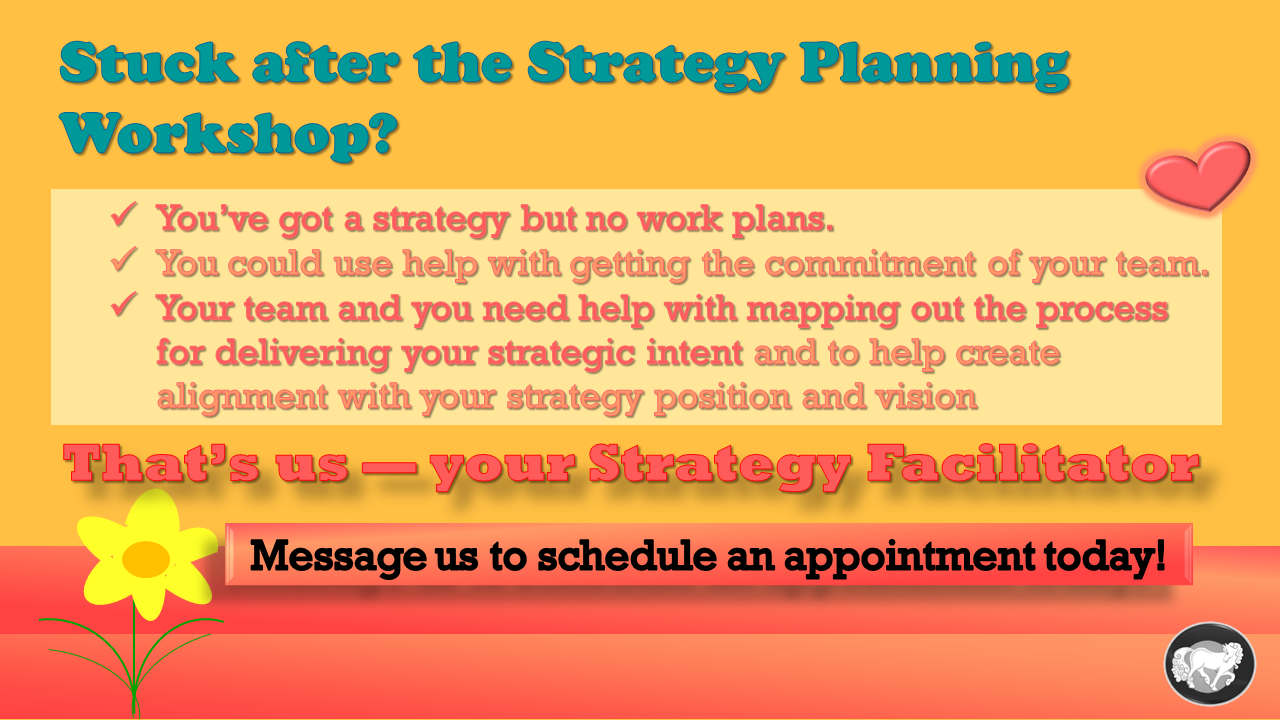 strategy facilitator promo 17