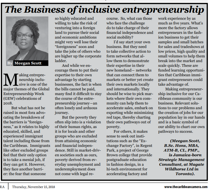 The Business of inclusive entrepreneurship by Meegan Scott