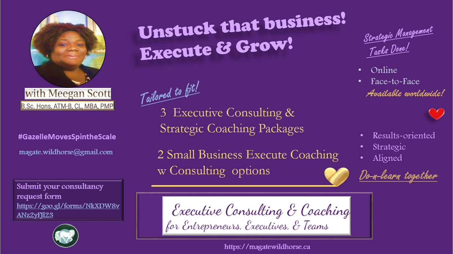 strategic executive consulting and coaching solution for entrepreneurs, executives and their teams, grow and execute