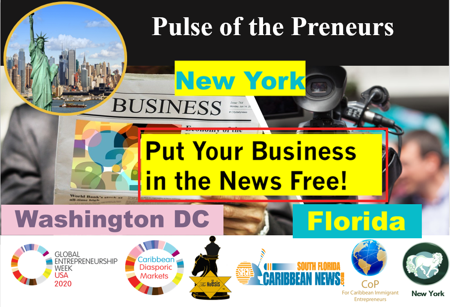 Pulse of Preneurs Noesis SFlN Flo